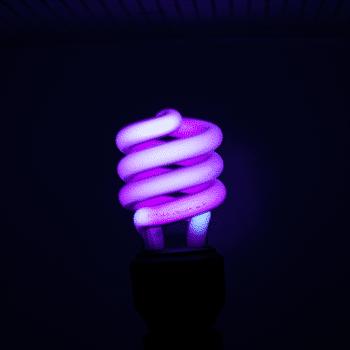 Blacklight Tampons