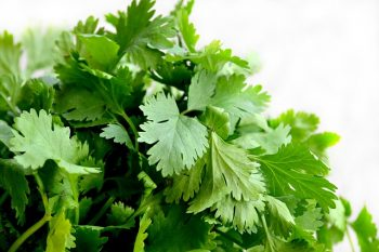Coriander Thyme essential oil douche